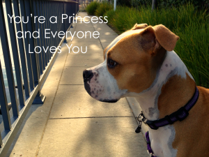 You're a Princess and Everyone Loves You