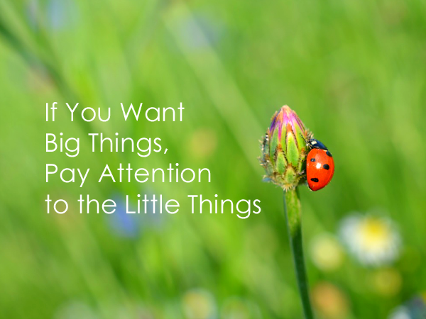 If You Want Big Things Pay Attention to the Little Things